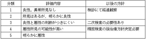 (1)カテゴリー分類
